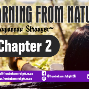 Chapter 2 - Learning from Nature